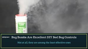 Bug Bombs For Bed Bugs Major Myths About Treatment Of Bed Bugs Busted