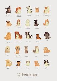 Types Of Dogs Katie Lou Illustration