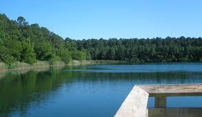 photos u2014 hoffler creek wildlife preserve foundation and preserve