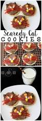 Decorate Halloween Cookies The 25 Best Cat Cookies Ideas On Pinterest Kawaii Cookies