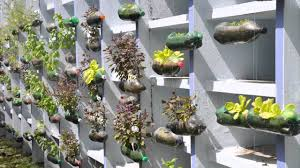Planters That Hang On The Wall The Hanging Garden Project American Of Recife Youtube