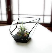 glass terrarium indoor planter diy kit glass planter home