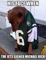 Mike Vick Memes - jets michael vick nfl nfl funnies other stuff pinterest
