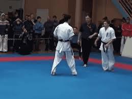 imagenes gif karate karate gifs tumblr