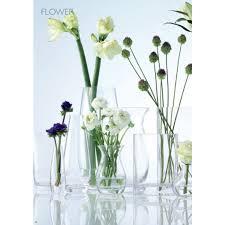 Single Stem Glass Vase Lsa Flower Tall Single Stem Vase 50cm Pavilion Broadway