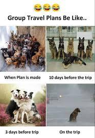 Trip Meme - group travel plans be like funny meme funny memes