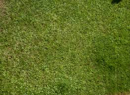 free ground grass textures for 3d modeling design and game