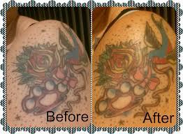 tattoo goo aftercare lotion review amazon com tattoo shine cream care renew keep it fresh 4 ounce