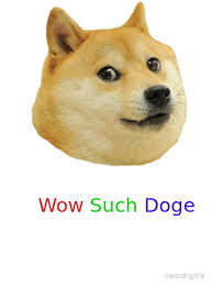 Wow Dog Meme - such dog meme 28 images doge swag memes wow such trend doge
