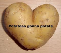 What If I Told You Potato Meme - what if i told you potato imgur