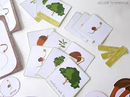 montessori tree printable montessori inspired oak tree life cycle printables acorn printables