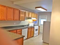 kitchen cabinets charming l shaped small modular kitchen designs