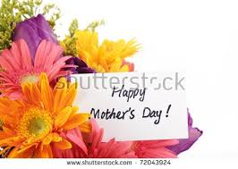 s day flowers mothers day flowers stock images royalty free images vectors