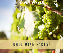 Ohio Where Should I Travel images What every wine lover should know about ohio wine png