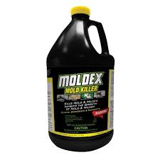 moldex 1 gal mold killer 5520 the home depot