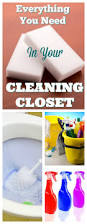essential tools in any cleaning closet the organized mom