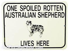 petz 5 australian shepherd australian shepherd love bone dog breed sticker vinyl decal
