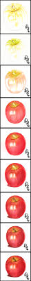 how to color a delicious pink lady apple with colored pencils