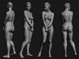 Female Anatomy Reference 109 Best Anatomi Anatomy Images On Pinterest Anatomy Drawing