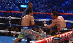 Pacquiao Knockout Memes - the 8 funniest manny pacquiao memes from the marquez fight sbm