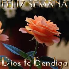 imagenes de feliz inicio de semana con rosas feliz semana dios te bendiga imagen 8519 imágenes cool
