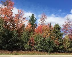 fall color photo tour u2013 northern michigan u2013 october 7 2015