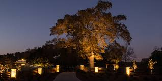 Outdoor Up Lighting For Trees Why Use Led Lights For Commercial Landscape Lighting