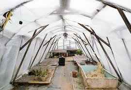 garden hacks 10 genius ideas to keep plants warm in winter