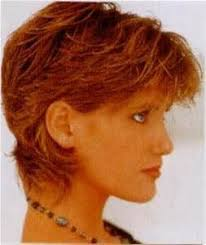 shag hairstyle for round face and fine hair 197 best hairstyles for thin hair images on pinterest hair cut