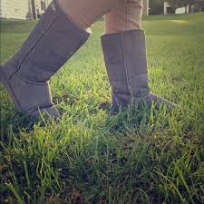 bearpaw womens boots size 9 28 paw shoes grey paw boots from