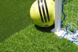 athletic fields home putting solutions