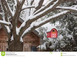 red barn birdhouse on tree in winter stock photo image 46453081