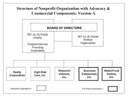 nonprofit structure nonprofit advocacy nonprofit commercial ventures