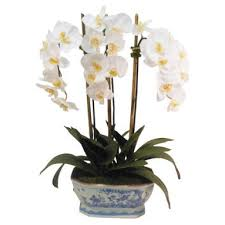 faux orchids shop faux orchids arrangements on wanelo regarding faux orchids