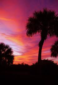 123 best our sunsets images on pinterest anna maria island