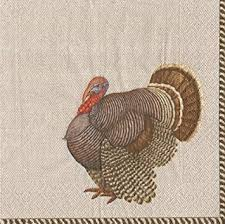 thanksgiving dinner napkins thanksgiving party supplies for thanksgiving