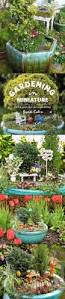 Mini Fairy Garden Ideas by 209 Best Miniature Fairy Gnome Etc Garden Ideas Images On