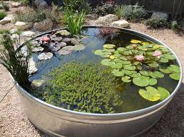 How To Make Backyard Pond by Metal Tank Garden Pond Excellent How To Via The Link Don U0027t