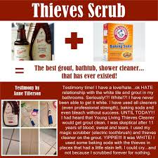 Grout Cleaning Tips Thieves Scrub Tile And Grout Testimony Cleaning Organizing
