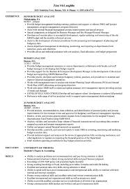 sle resume cost accounting managerial emphasis 13th amendment budget analyst resume sles velvet jobs