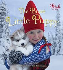 the christmas wish book the christmas wish lori evert per breiehagen 9780449816813