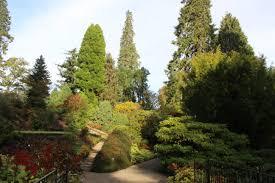 plants native to scotland edinburgh scottish native plants rhs gca fellowship experience