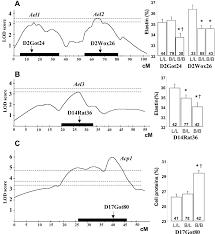 Qtl Mapping Chromosomal Mapping Of Quantitative Trait Loci Controlling Elastin