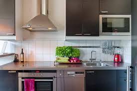 mini hotte aspirante cuisine cuisines cuisine idée originale style luxe hotte aspirante