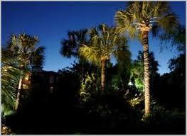 Moonlighting Landscape Lighting Moon Lighting Landscape For Better Experiences Spacious Skies