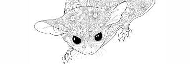 paperbark writer u2013 australian nature meets science u0026 art by paula
