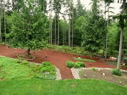 Backyard Well Mavis Butterfield Backyard Garden Plot Pictures U2013 Week 22 Of 52