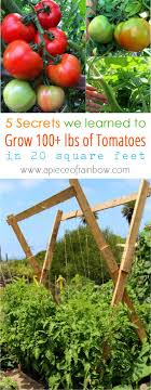 best 20 herb planters ideas on pinterest growing herbs tips for growing winter veggies best grow food not lawns gardening
