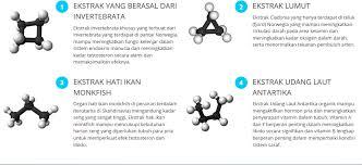 toko sayfu jual obat forex asli di bali antar gratis