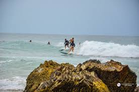 beach jeep surf giggleyohoo gold coast world surf league